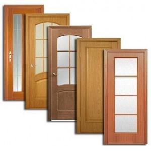 Двери, дверные блоки Пудожа